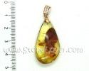 Amber Pendant / จี้อำพัน [14041602]