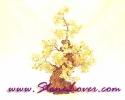 Citrine Tree / ต้นไม้ซิทริน [07120550]
