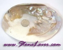 Shell / หินทรงแผ่นเปลือกหอย [08012094]