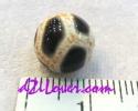 Tortoise Shell/Longevity dZi Bead /หินทิเบตกระดองเต่า [00T007]
